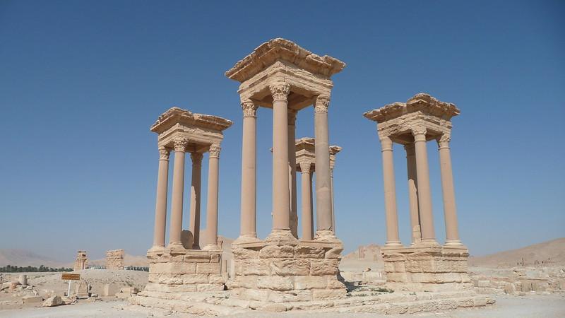 Palmyra 239