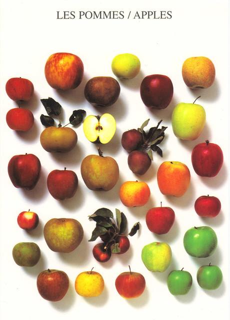 Nouvelles Images Apples Postcard