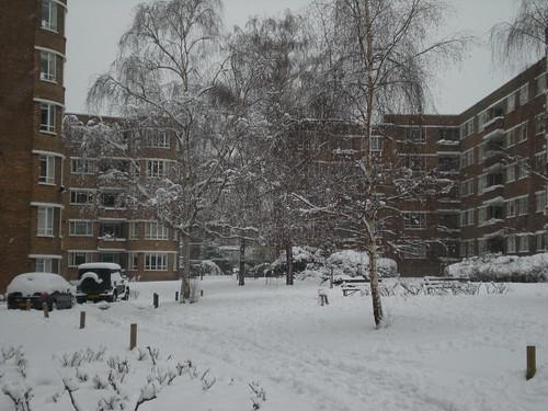 Estate under snow