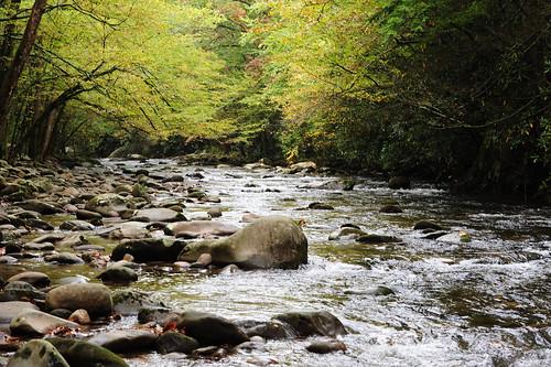 Great Smoky Mountain National Park | by cwwycoff1