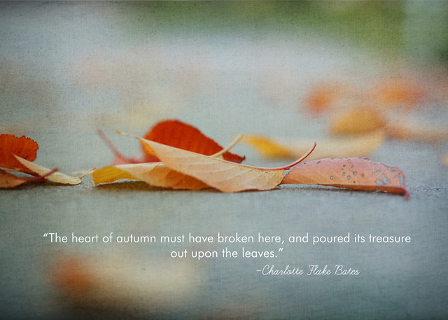 Fallen Leaves Love This Quote And Thought It Went Well Wit Flickr