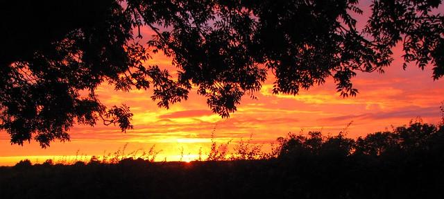Hertfordshire Sunset 1st Aug 09