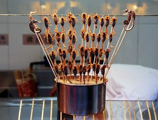 live scorpions on a stick, wangfujing snack street, beijing   by hopemeng