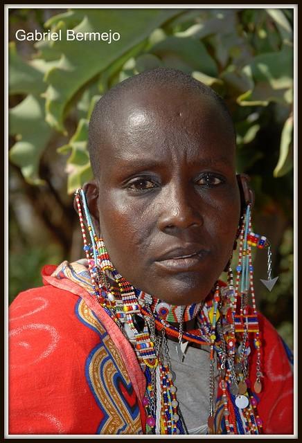 Mirada firme - Amboseli