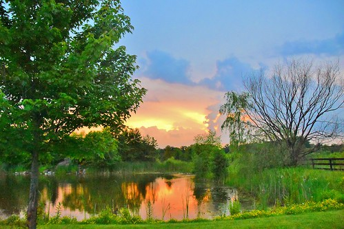 sunset usa reflection tree nature illinois pond nikon lincolnshire 18200mm stevelamb d7200