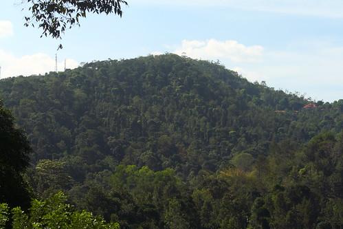 aerial hilltop idukki kerala india ind