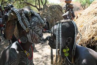Tribal views: attachment