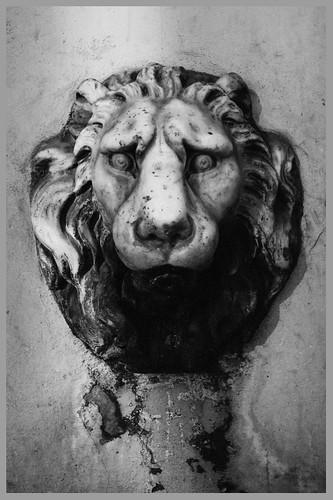 Fiesole - Fontana