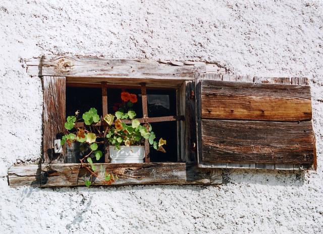 Small Window [Forni di Sopra - 15 August 2007]