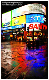 London Piccadilly Circus at Night ~ Colors of the London Rain...~