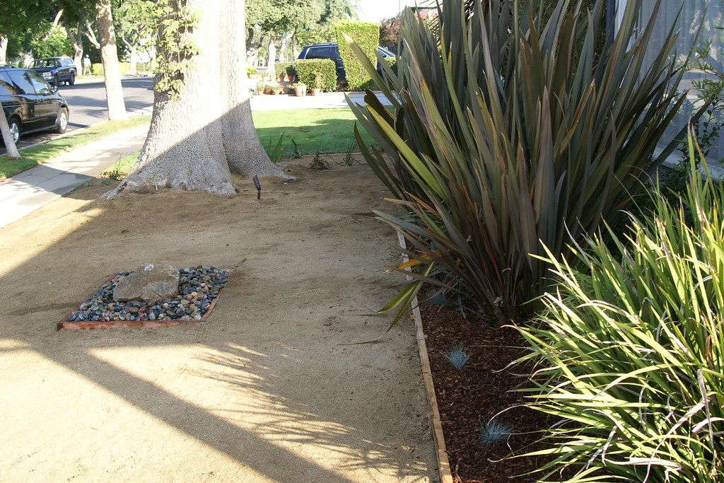 Fountain, Fescue and redwood 2x4 for edging | Leslie AKA Sess Hyman