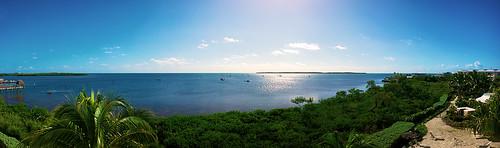 ocean blue trees sky sun reflection tree water marina keys key view florida panoramic palm atlantic resort mangrove villa flare mariners caribbean mangroves largo villas flair floridakeys keylargo keyscaribbean