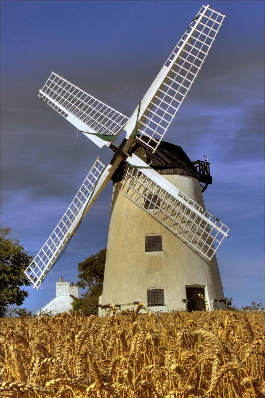 Wind,Mill,Windmill,Barley,Cornfield,field,barleyfield,sails,white,blue,sky,summer,harvest,time,365days,HDR,high dynamic range,hotpics,hotpic,hotpick,hotpicks,hotpix!