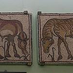 146. Qsar Libya (Olbia Theodoria)