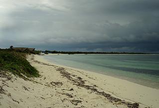 Beach -Joe-03 | by KathyCat102