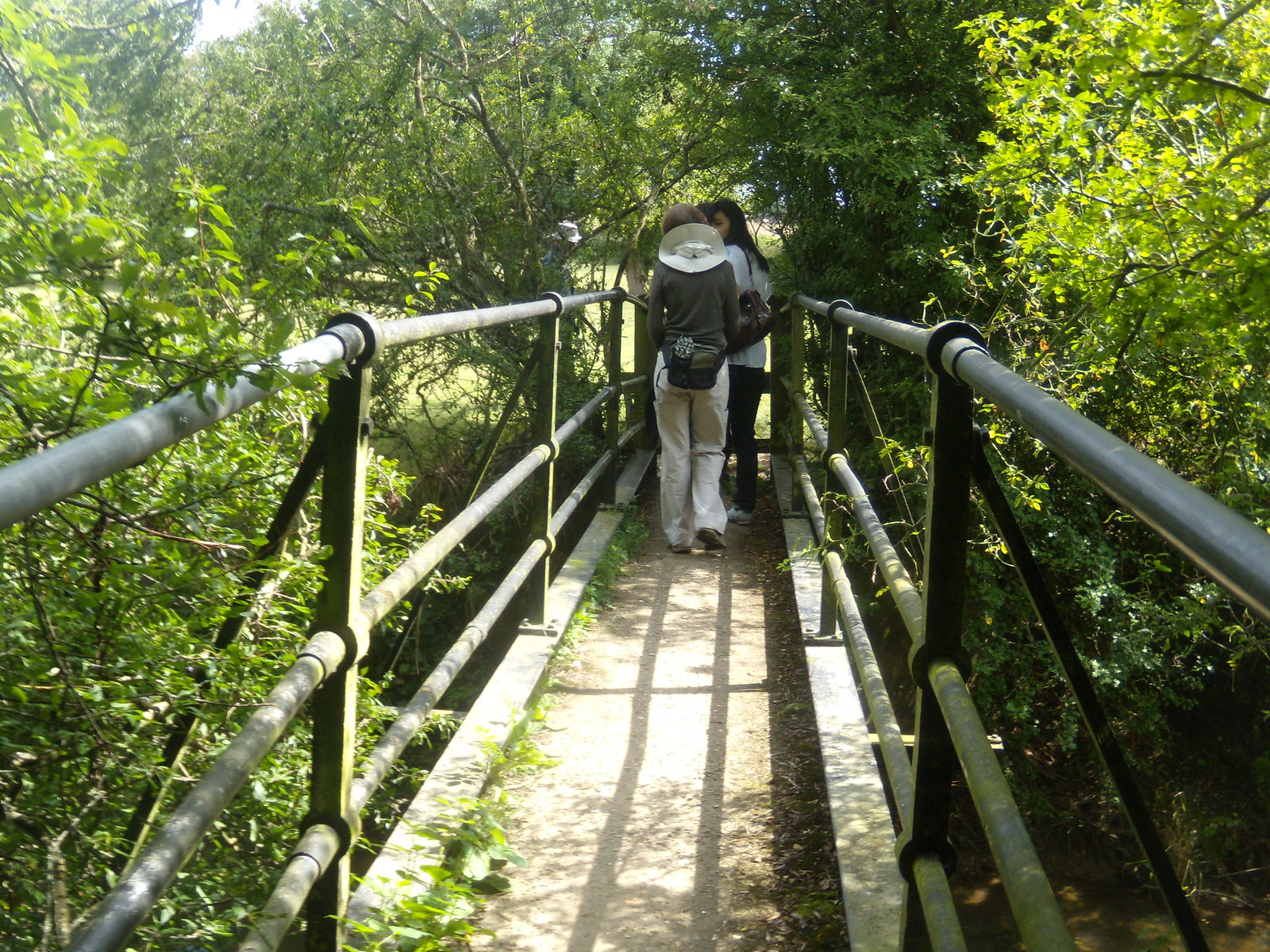 Over a bridge Cowden to Hever