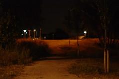 pre-birthday midnight walk