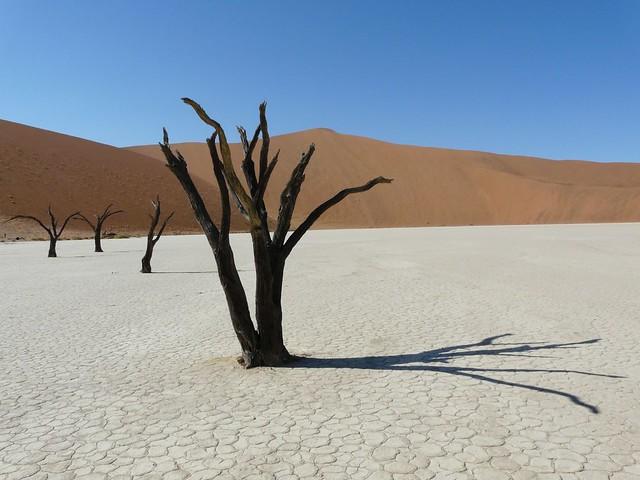 Dead Vlei (El lago muerto de Namibia)