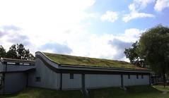 Malmö kanotklubb