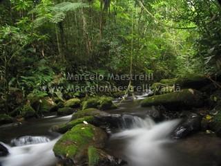 Corredeiras - Parque Nacional da Serra da Bocaina - SP