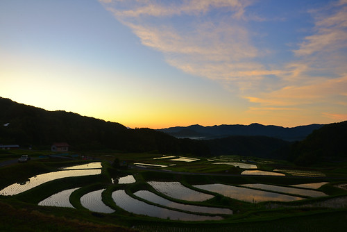 morning sun beautiful japan countryside nikon dusk tranquility sunny shimane agriculture ricefield 田んぼ terraced sanin inaka d600 田舎 雲南 eflection 島根 unnan 農業 棚田 山陰 daitou 大東町 puddyfield 棚田百選 山王寺棚田 山王寺