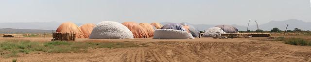 Cotton Panorama