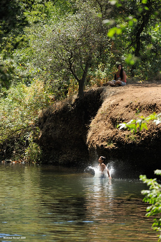california park boy usa wet water creek swim jump jumping swimmer chico splash leap leaping bidwellpark bidwell image:rating=4 image:id=078957