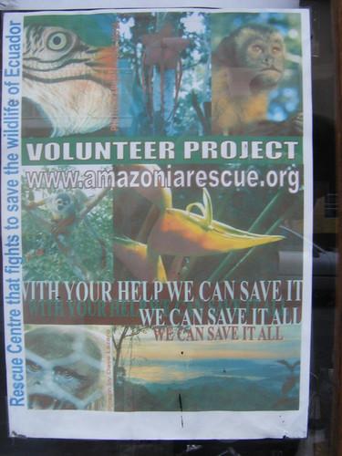 Volunteer in Ecuador Project 1 | by tdepke