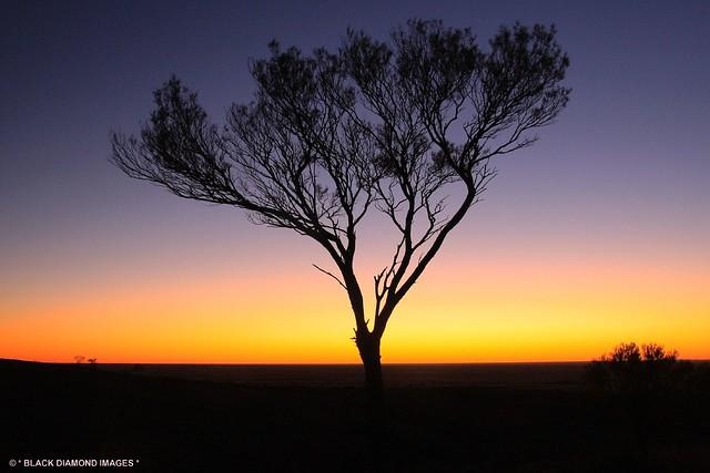 Sunset over the Mundi Mundi Plains