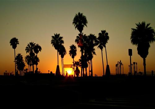 california sunset beach sunrise beaches venicebeach atardeceres southerncalifornia playas venicecalifornia venicbeach amaneceres venicebeachcalifornia oceanfrontwalk venicebeachvenicebeach morito36pa moisesrivas californiaplayasbeachescalifornia