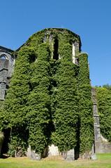 Kloster Villers-la-Ville