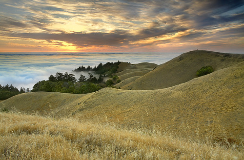 The Photographers - Marin County, California
