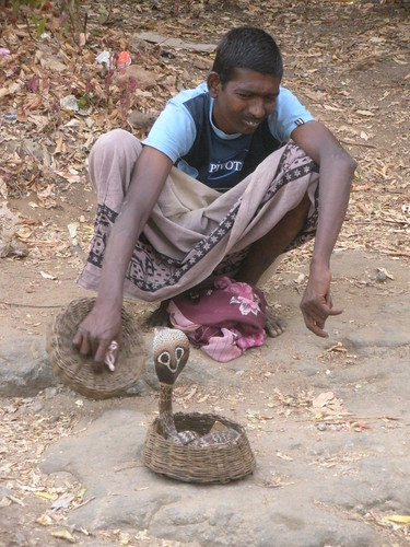The (Cobra) snake charmer (2) - Sri Lanka | by kanenas.net