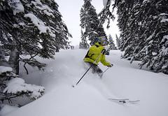 Train SNOWfest 08 - Když byla horší viditelnost, nastal pravý čas podívat se do lesů nad Davosem a Klosters.