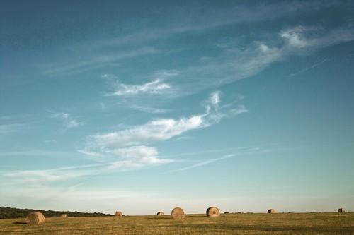 ny clouds digital landscape sigma pointandshoot ithaca foveon dp2