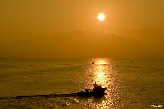 Faenando en un mar dorado