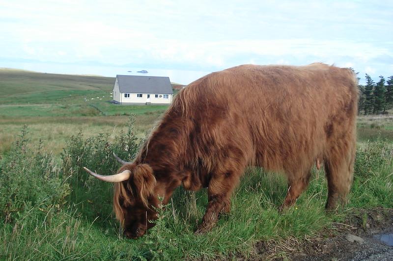 Highlands, Escocia