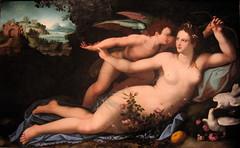 Venus Disarming Cupid | by Beesnest McClain