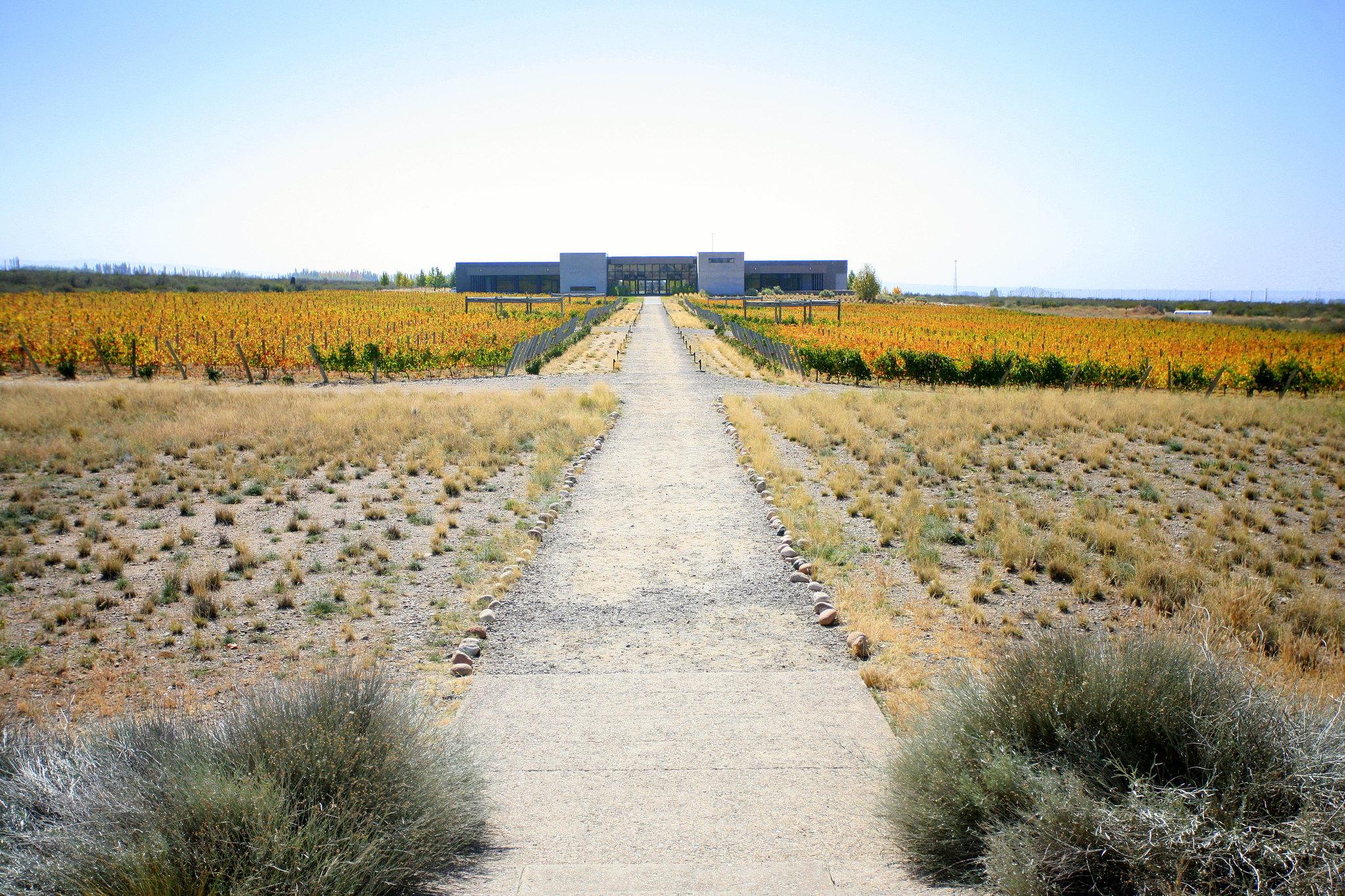 Mendoza 2009