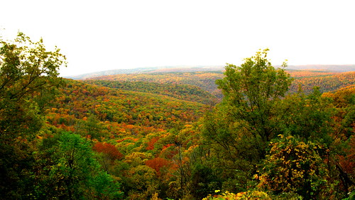 Autumn in the Ozarks | by OakleyOriginals