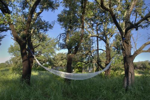 Colorado Bend State Park Camping/Road Trip   by jrandallc