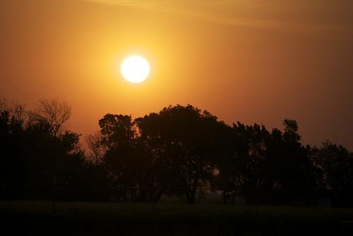 orange color nature sunrise photography nikon project365 18200vr d80