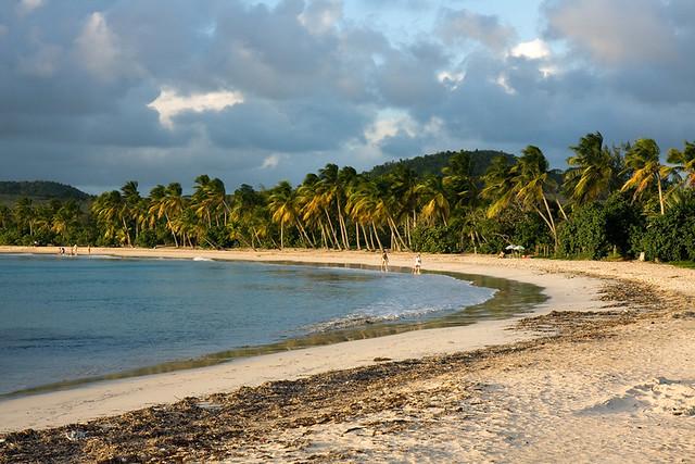 plage des salines en fin de journée- Martinique