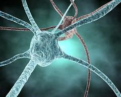 neurons | by juliendn