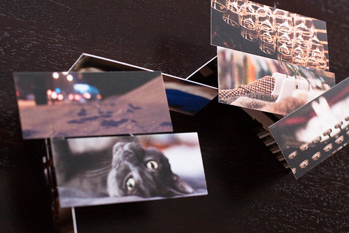 Moo Card Houses | by KeriFlur