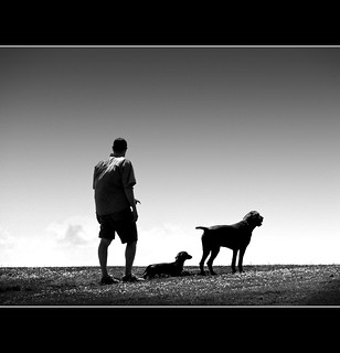 Man's Best Friend | by Nick Kenrick.
