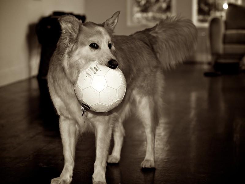 It's my soccer ball