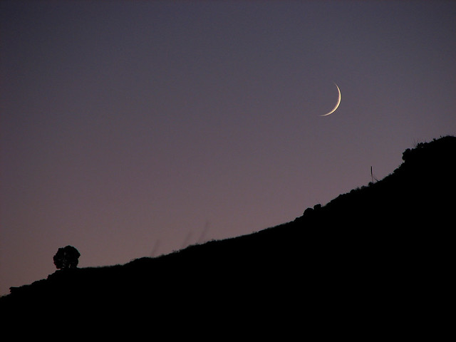 Molino Moon Rising