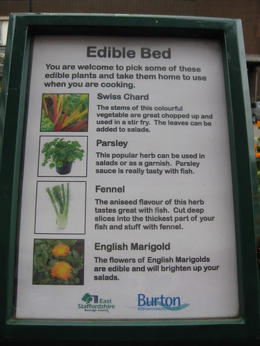 Pick your own edible plants | by Diego Sideburns
