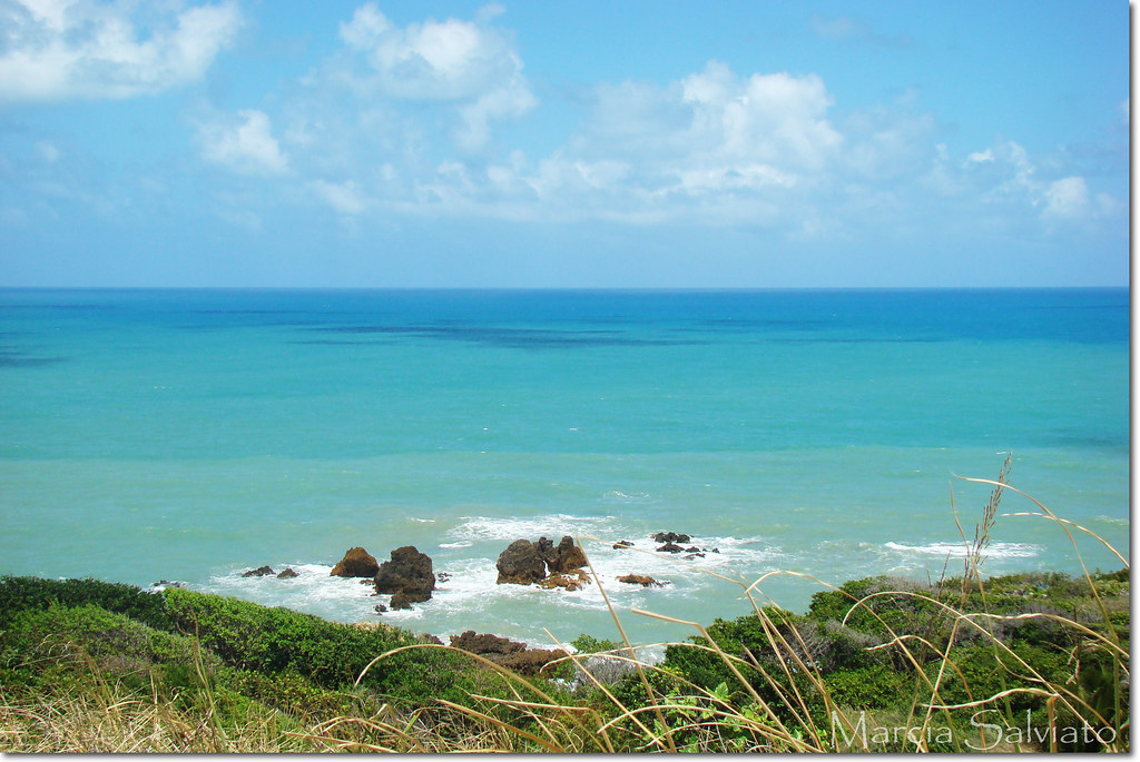 Tambaba Beach Brazil Stock Images - Download 35 Royalty